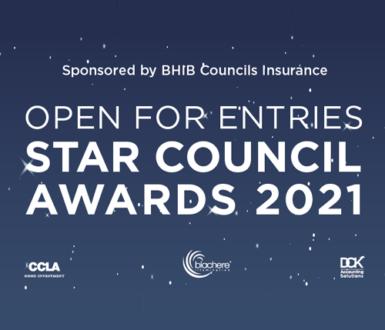 NALC Star Council Awards poster