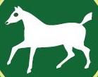 Broad Town Logo